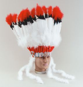 Professional American Indian Headdress
